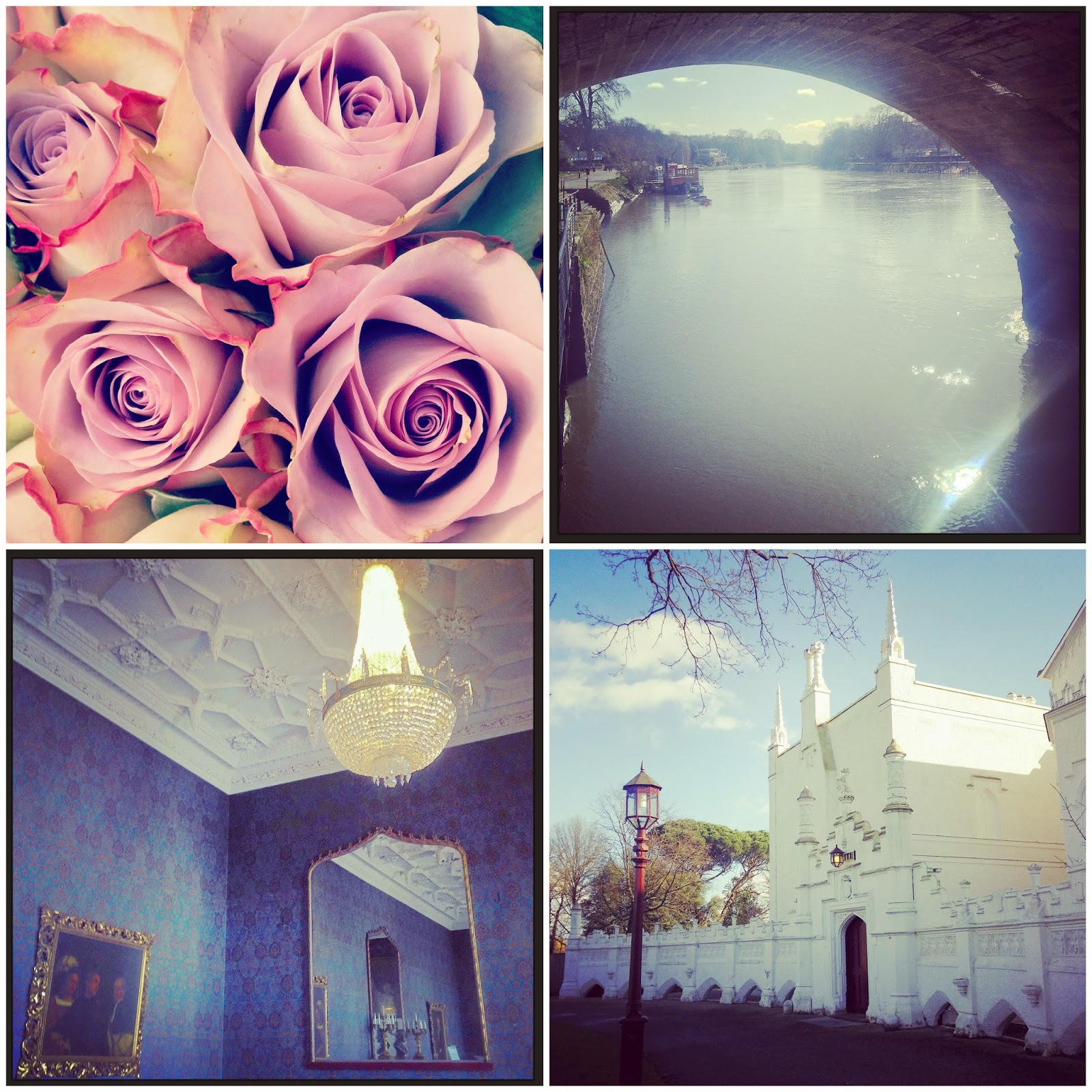 roses, the thames, strawberry house & st. mary's university