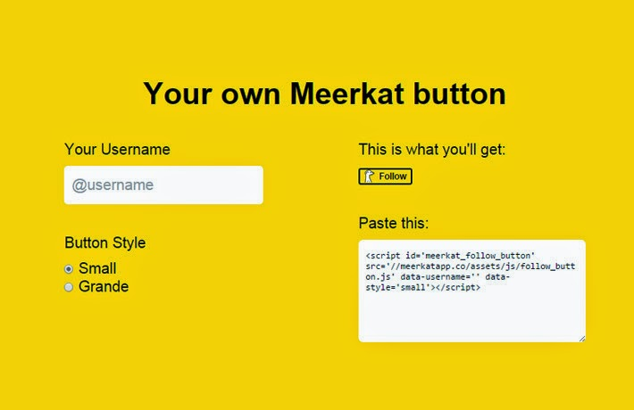 "How To Add ""Follow Me On Meerkat"""