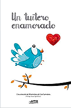 Un tuitero enamorado