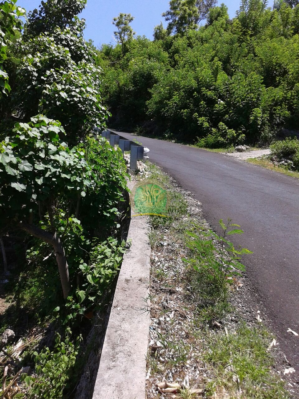 tanah murah nusa penida pinggir jalan utama dan fullview sudah ada izin bangunan