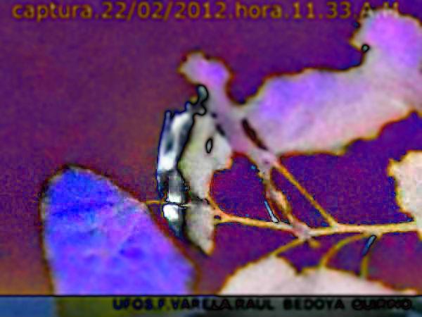 UFO SONDA,TUBULAR.2012.R.B.Q.*