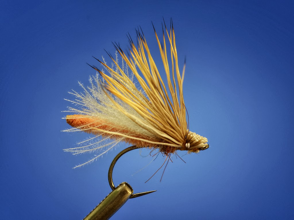 Palomino caddis fly fish food fly tying and fly fishing for Fly fish food