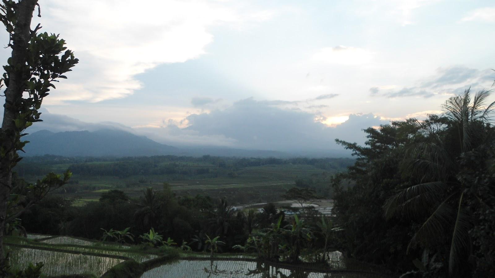 Pemandangan Alam Sawah Dan Gunung Nan Alami Di Secang At Wisata