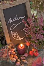 Istanti d'autunno