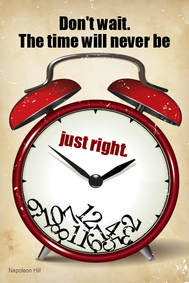 visual quote - image quotation for MOTIVATION - Don't wait. The time will never be just right. - Napoleon Hill