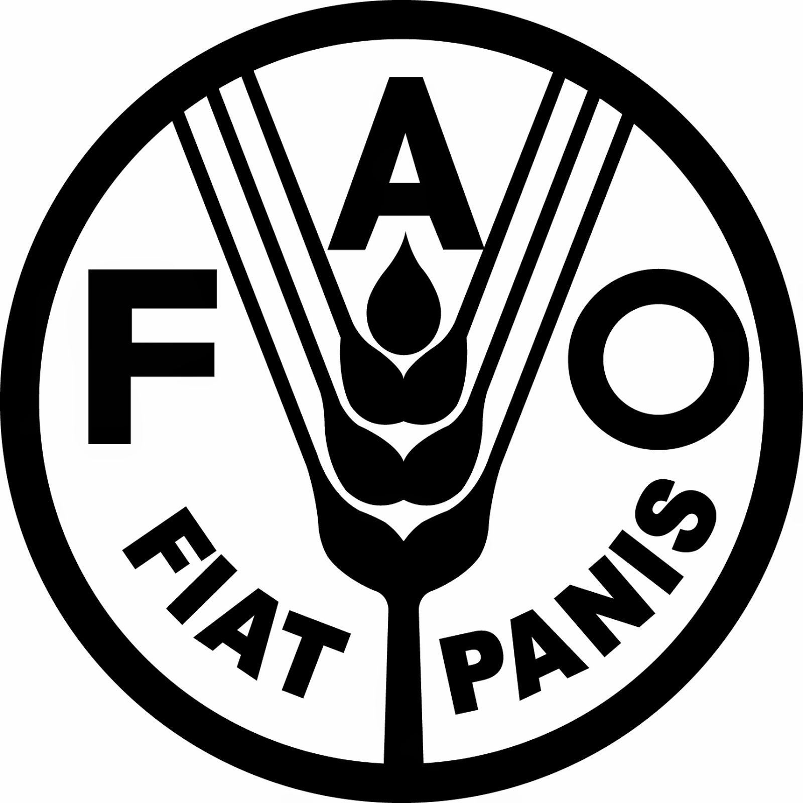 Database Programmer for FAO ECTAD Indonesia Programme, Jakarta - Indonesian