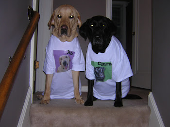 Jeb and Clara model their shirts from Kristy!
