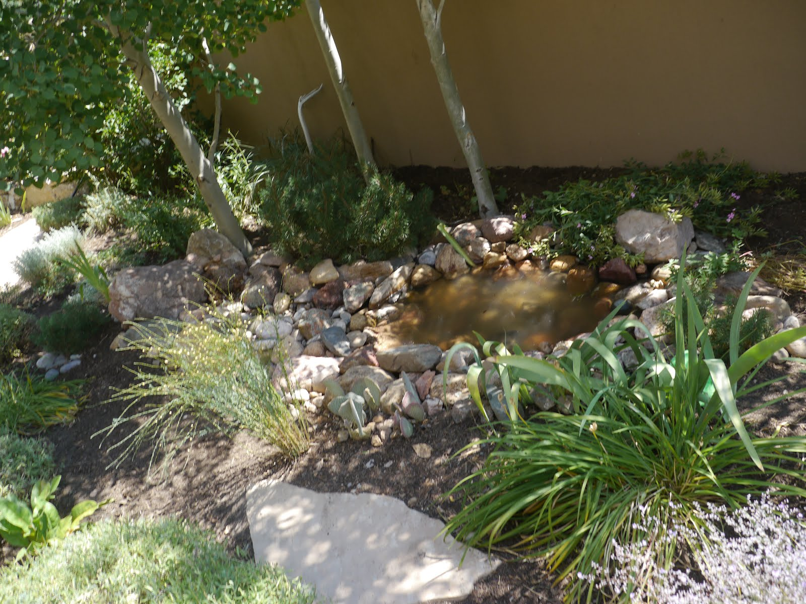 Home style choices small backyard water feature ideas for Small water features