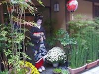 お茶屋(たけ田?)は、緑が豊富だった。