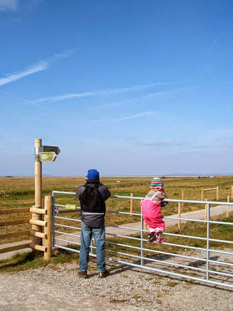 looking out towards the bristol channel at steart marsh in somerset