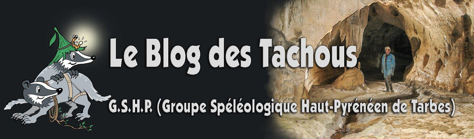 Le Blog des Tachous