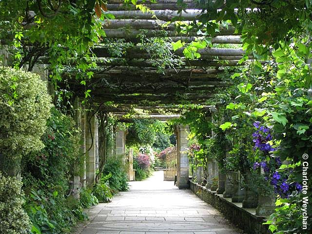 The Galloping Gardener Galloping Gardener Walks Three Glorious Castle Gardens In Kent