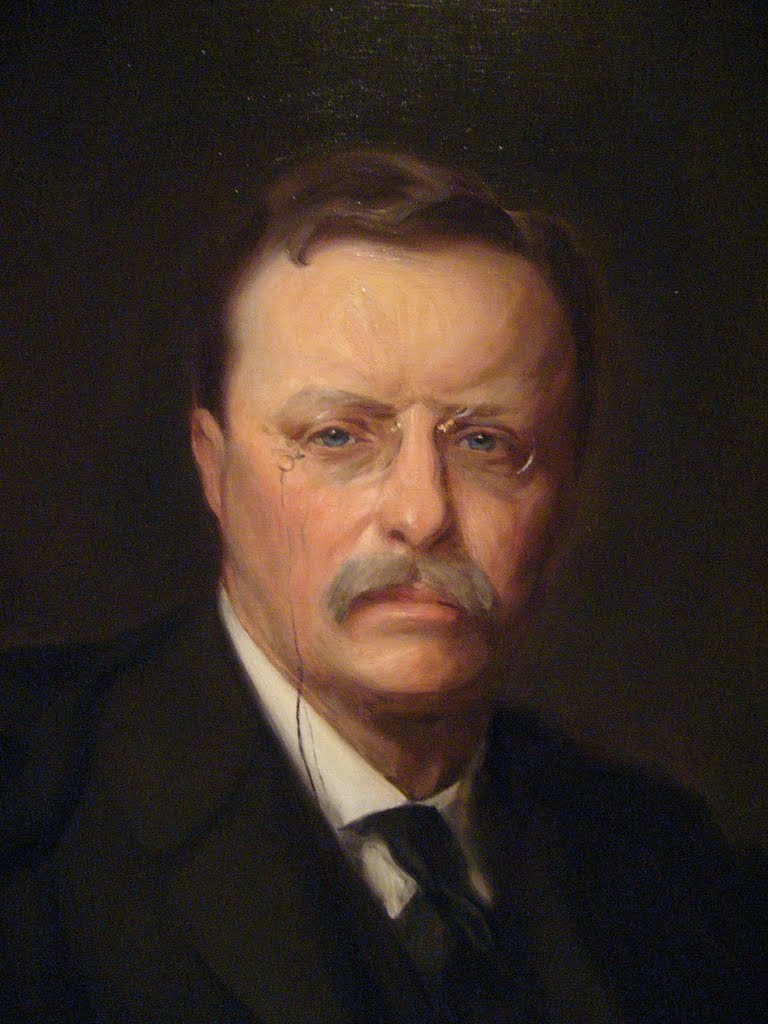 theodore roosevelt and muckrakers Off-site search results for pure food and drug act: a muckraking triumph pure food and drug act - biography of theodore roosevelt by theodore roosevelt association.