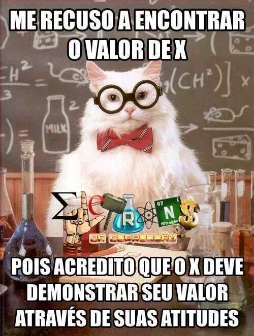 O X DA QUESTÃO......