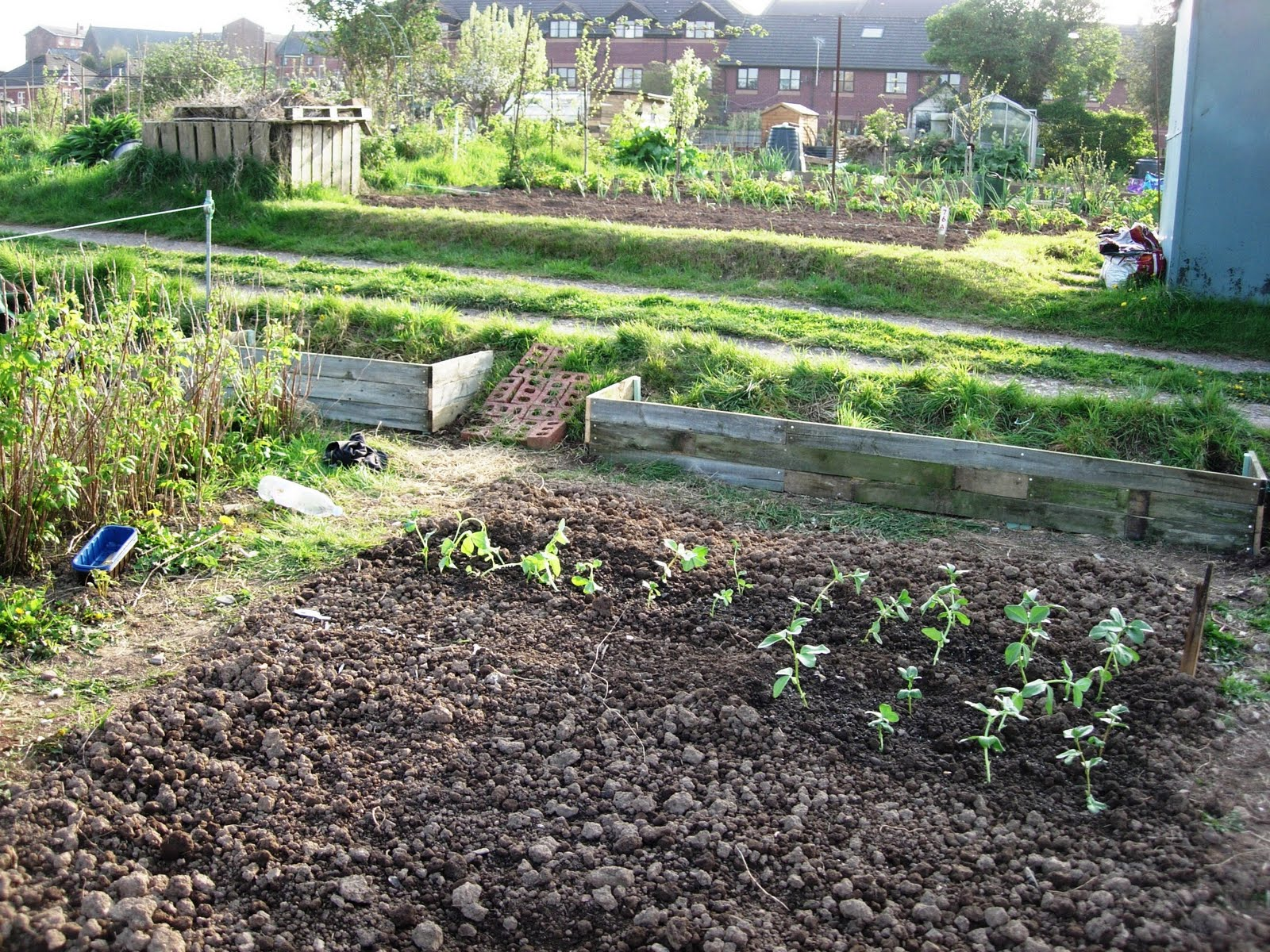 how to start an allotment on mypay