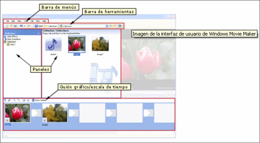 Dibuja la inerfaz de WMM, identifica y describe sus componentes.
