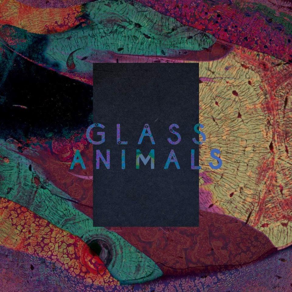 Glass Animals Gooey Remix