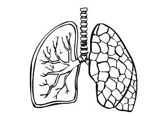 Enfermedades del intersticio pulmonar