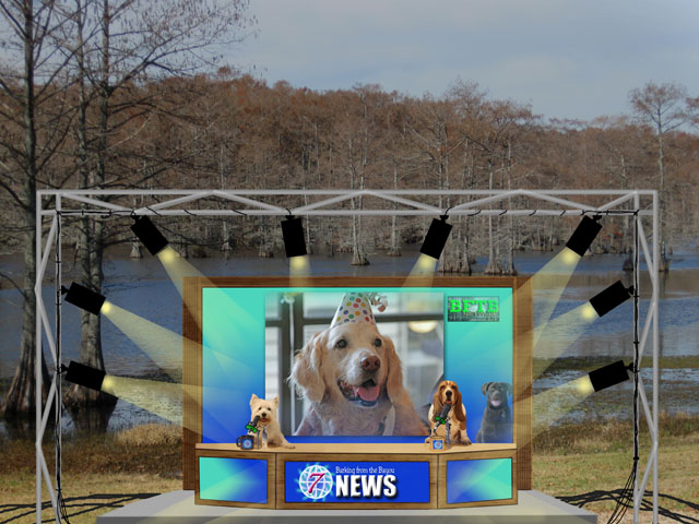 BFTB NETWoof News set with dogs in bayou setting