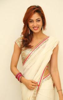 Actress Vidisha Srivastava Latest Pictures in Saree at Harinath Wedding Reception  19.jpg