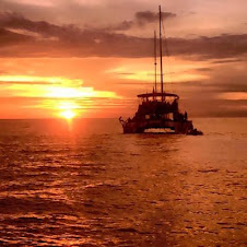 SUNSET DINNER CRUISE (4:00 - 8:00 PM )