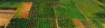 Πρόγραμμα ενίσχυσης Νέων Αγροτών 2014