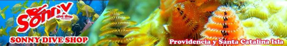 Sonny Dive Shop - Providencia Isla