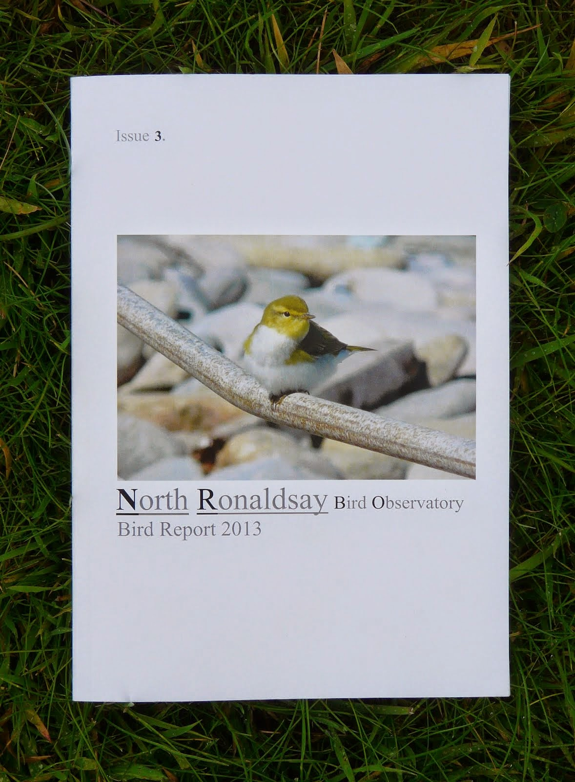 The 2013 NRBO report is out now!!