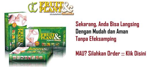 Obat Pelangsing Fruit and Plant