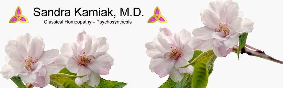 Sandra Kamiak MD - Homeopathy Doctor Saratoga