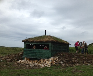 New hide discovered on Mull