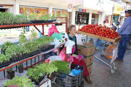 Venta de plantas y verduras calle Serrano esq. Matta