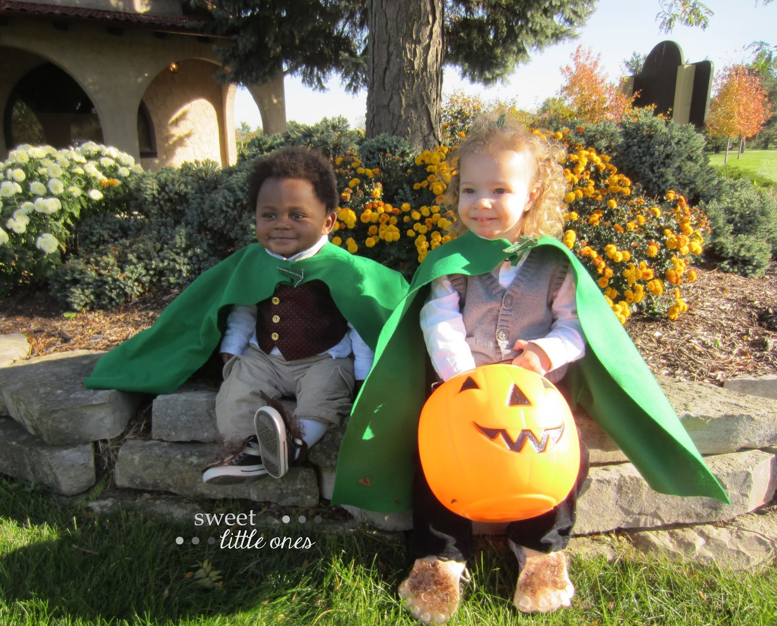 DIY Hobbit Halloween Costumes - My Favorite Space: My Craft Room - www.sweetlittleonesblog.com