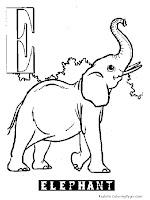 Animal Alphabet E Elephant