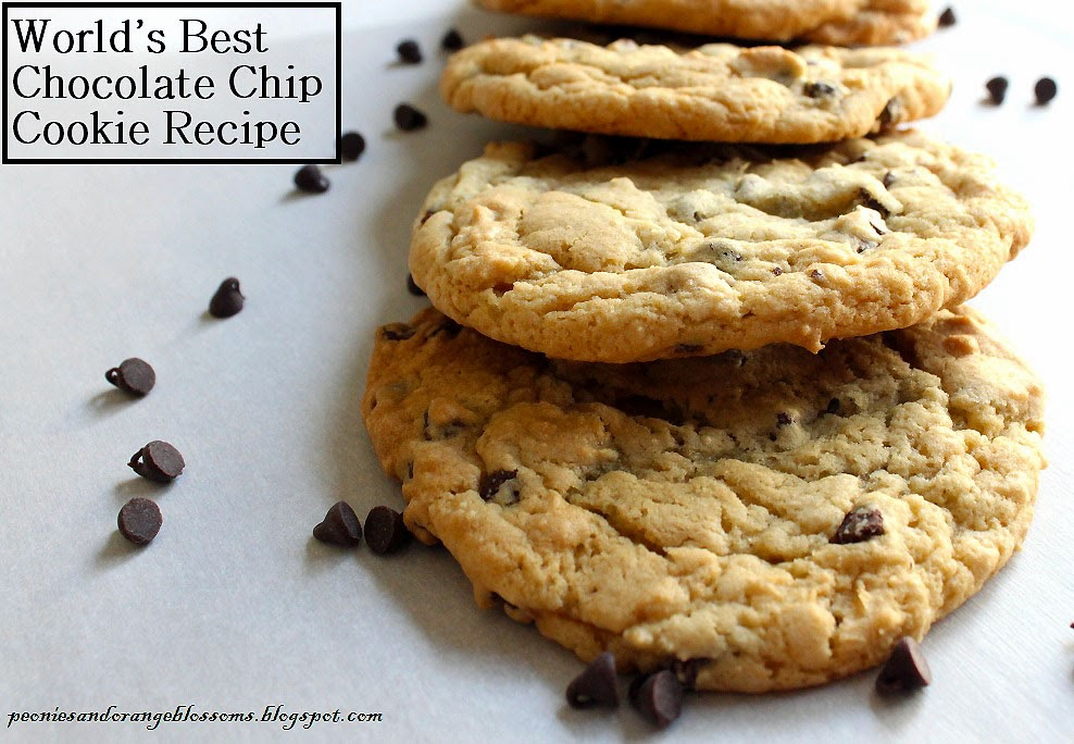 ... and Orange Blossoms: The Best Chocolate Chip Cookie Recipe EVER