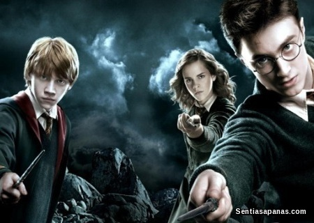 Wizard - Harry Potter