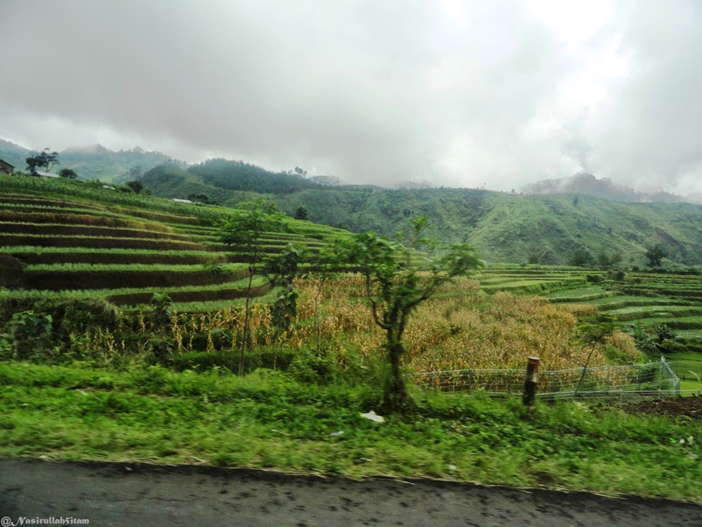 Pemandangan disepanjang arah ke Pemandian Air Panas Guci, Tegal
