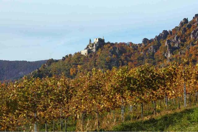 Die Burg in Dürnstein im Herbst © Copyright Monika Fuchs, TravelWorldOnline