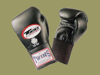 Twins Muay Thai Boxing Gloves4