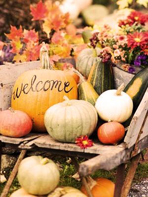 decoracion calabazas otoño