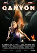 El cañón (2009)