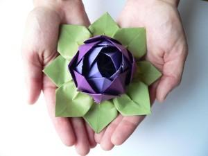 Origami lotus flower video tutorial mightylinksfo