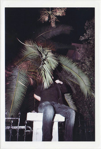 dirty photos - umbra - a night street photo of man behind palm tree leaves