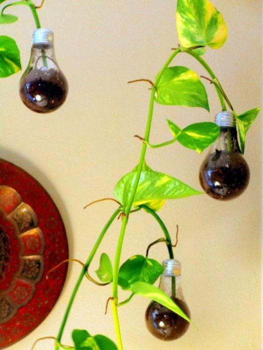 ma poubelle est un jardin special recyclage les ampoules electriques usag s. Black Bedroom Furniture Sets. Home Design Ideas