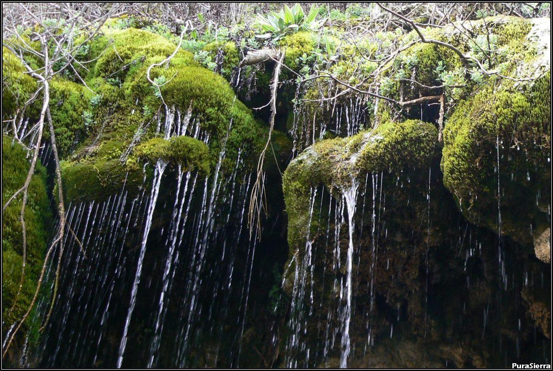 Cascada De La Tobilla (Arroyo De La Tobilla, Vega Del Codorno)