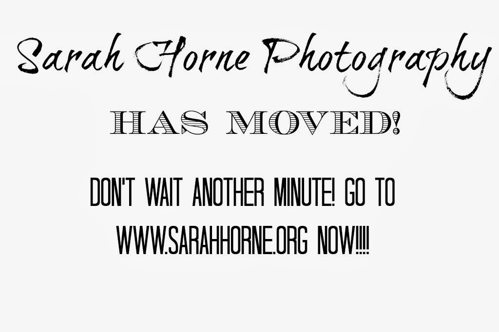 Sarah Horne Photography