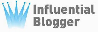 Check Out My Top 10 Emerging Influential Blogs for 2011