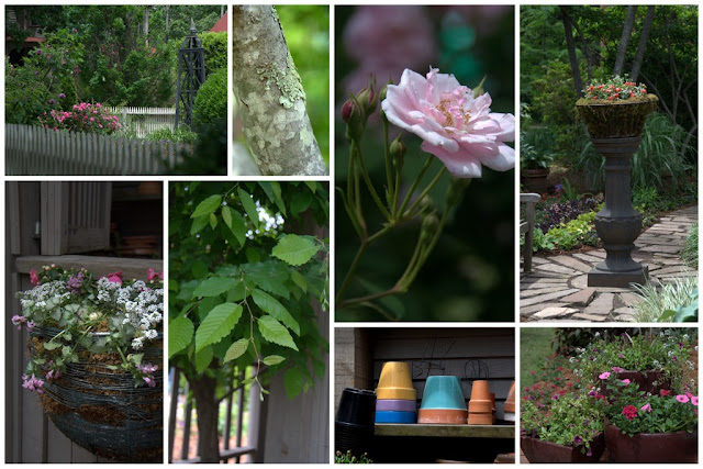 Collage of garden photos.