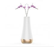 vas bunga canggih