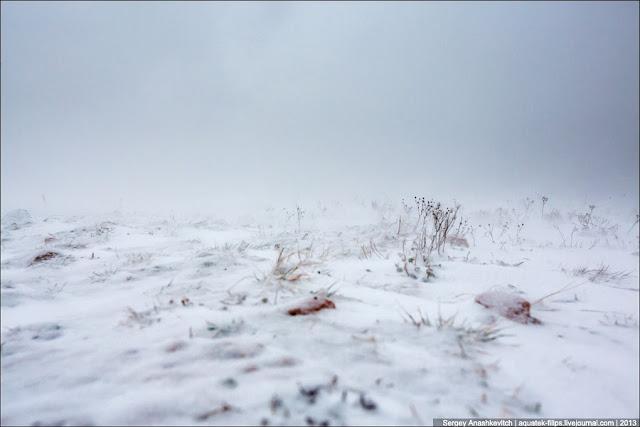 А, между тем, ветер усиливается, количество снега прибавляется с каждой минутой